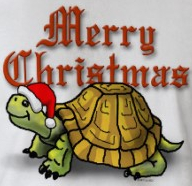 merry_christmas_turtle.jpg